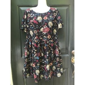 ✨ F21 Contemporary Floral Skater/ Shift Dress